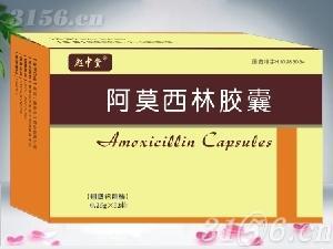 阿莫西林膠囊(雙鋁)