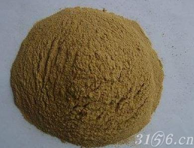 氨基酸蛋白粉
