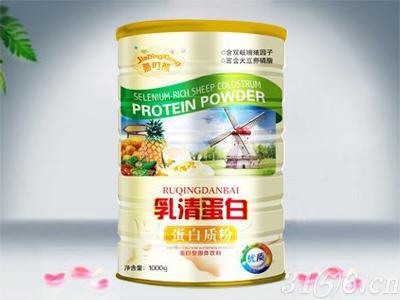 嘉叮熊-乳清蛋白蛋白質粉