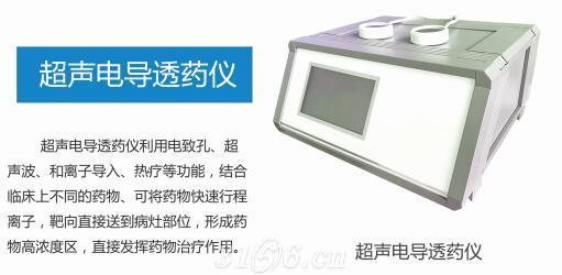 超声电导透药仪