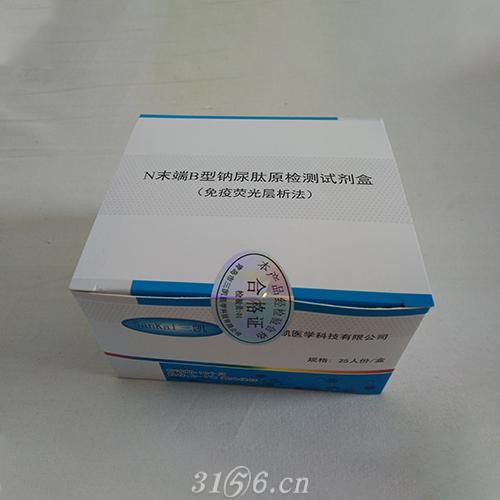 华盛SK+N末端B型钠尿肽原试剂盒